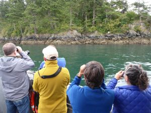skagit guided birding tours vendovi island cruise